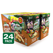 Disney Apple Cinnamon Fruit Crisps 24-pack