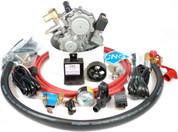 LP Conversion Kit For 4 or 6 Cylinder Carburetor Gasoline Engines up to 3.5 Liters Model LPC4