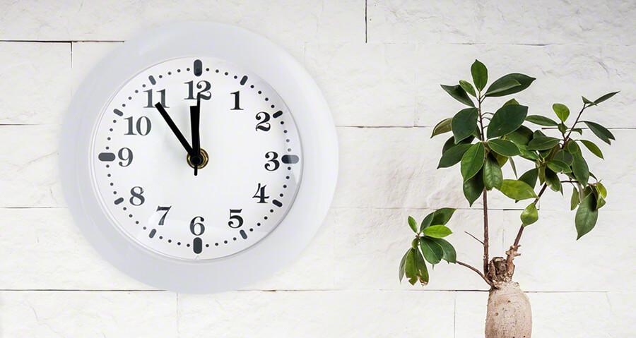 Best Nanny Cam Clocks 2019