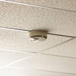 smoke-detector-hidden-camera-ceiling-mount.jpg