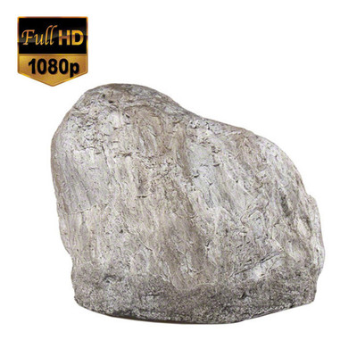 1080P HD Outdoor Rock Hidden Camera
