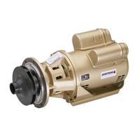 110108-717 Armstrong Raypak 3 Boiler Header Pump