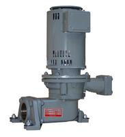 616PF-B35 Hoffman Domestic Pump 1/3HP 3500 RPM ODP 230/460 Volt