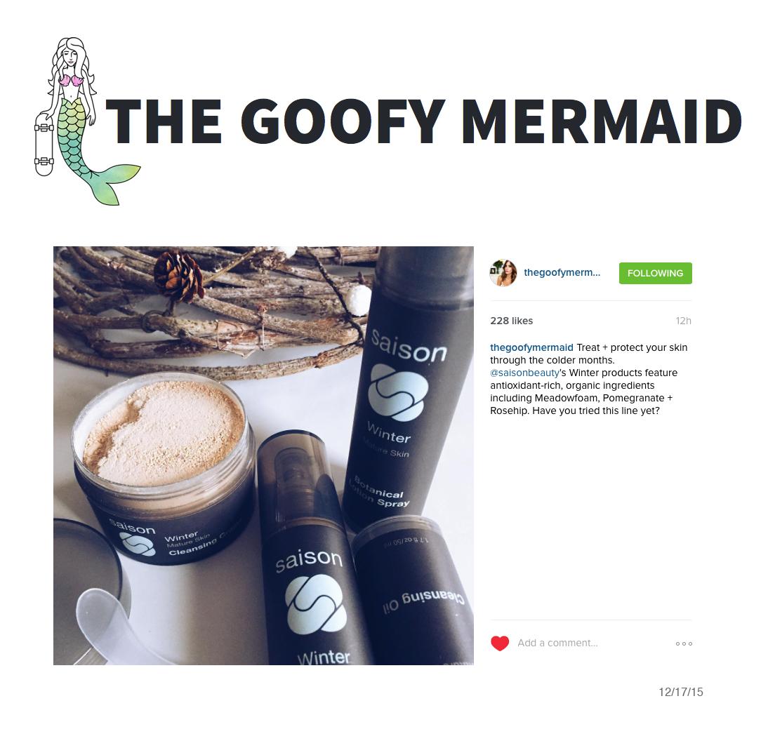 the-goofy-mermaid-instagram-12-17-15.png