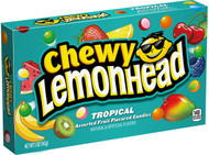 Tropical Lemon Head Lemonhead Candy 1 box 24 units