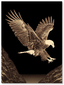 Picture Eagle Rug