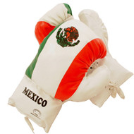 16 oz Adult Boxing Gloves Mexico Flag Design