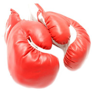 20 oz Adult Boxing Gloves Red