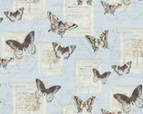 Butterfly and Moths Blue from Springs Creative Fabric