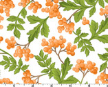 Fresh As A Daisy - Berries White by Rachel Shelburne from Maywood Studio Fabric