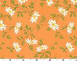 Fresh As A Daisy - Miniature Daisies Orange by Rachel Shelburne from Maywood Studio Fabric