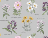 Botanic Garden - Flower Names Light Grey from Lewis and Irene Fabric