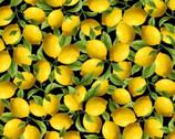 Make Lemonade - Packed Lemons Black from Timeless Treasures Fabric