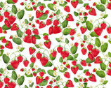Strawberry Fields Forever - Strawberry Patch White by  Kanvas Studio from Timeless Treasures Fabric