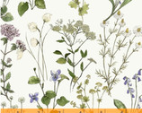 Midsummer - Meadow Sweet Wildflower Ivory by Hackney and Co from Windham Fabrics
