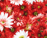 Princess Passion - Tonal Daisy Red from EE Schenck Fabric