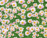 Princess Passion - Mini Pink Daisy On Green from EE Schenck Fabric