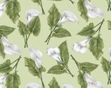 Magnificent Blooms - Calla Lily Toss Light Green from Benartex Fabrics
