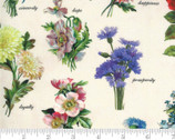 Flea Market Fresh - Floral Names Parchment Natural by Cathe Holden from Moda Fabrics