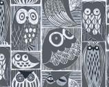 Blue Moon - Orion Owls from Dear Stella