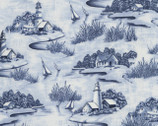 Coast Line - Sky Toile from Timeless Treasures
