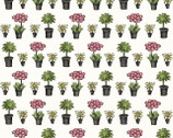 Salon Fleur - Potted Plants from Studio E