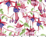 Fuchsias Hummingbirds - Fuchsias White by Barb Tourtillotte  from Clothworks
