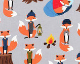 Campsite Critters - Fox Lake by Andie Hanna from Robert Kaufman