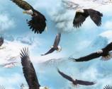 North American Wildlife - Eagles Sky Blue from Elizabeth's Studio