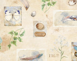 Nature Study - Nature Objects Allover Ivory Beige by Nancy Mink from Wilmington Prints Fabric