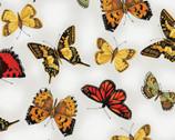 Poppy Poetry - Butterflies by Cedar West from Clothworks Fabric