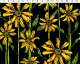 Follow the Sun - Daisies Black from Clothworks Fabric