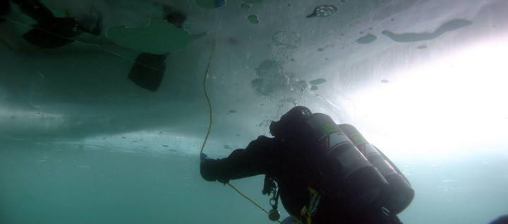 ice-diver.jpg