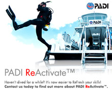 PADI ReActivate - Online & Pool Session