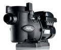 Jandy VS FLOPRO Variable -Speed Pump 1.65 THP, with JEP-R Controller