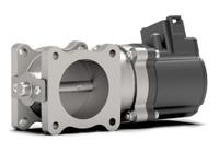 Woodward Throttle Valves 8404-2024