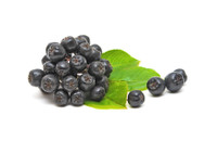 CurrantC™ Dried Aronia Berries - 1lb