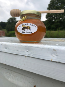 Honey Jar Bee hive