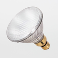 Satco S2248 60W PAR38 Flood Light Bulb