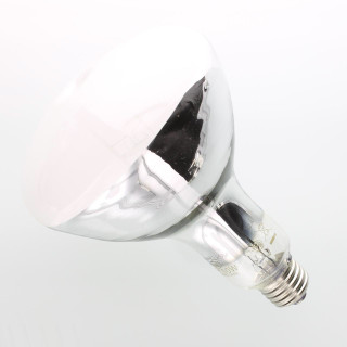 HR100 Mercury Vapor Landscape Light Bulb
