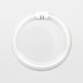 Satco FC8T9/WW/RS 22W 3000k Warm White Fluorescent Lamp