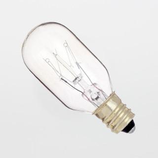 25T8/C 25W Candelabra Light Bulb (10-Pack)