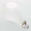 PH212 150W Photoflood Light Bulb