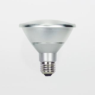 Satco S9419 13W PAR30 5000k 40-Degree LED Short-Neck Flood Lamp