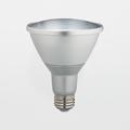 Satco S9438 13W PAR30 4000k 60-Degree LED Long-Neck Flood Lamp