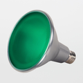 Satco PAR38 15W Green LED Flood Lamp