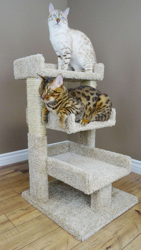 New Cat Condos Premier Triple Cat Perch in Beige