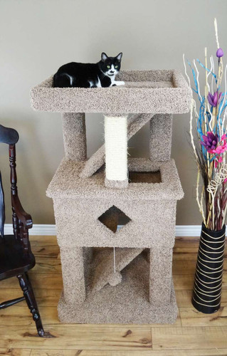 Premier Solid Wood Cat Play Gym brown