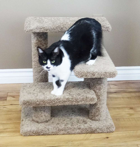 New Cat Condos Crazy Pet Stairs -Brown
