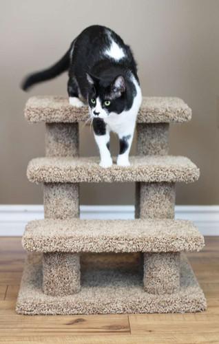 Premier Post Pet Stairs in brown